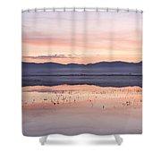 Cerknica Lake At Dawn Shower Curtain