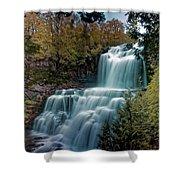 Chittanengo Falls Shower Curtain