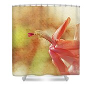 Christmas Cactus Shower Curtain