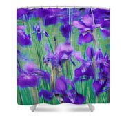 Close-up Of Purple Flowers Shower Curtain