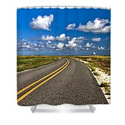 Cocodrie Highway Shower Curtain