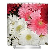 Colorful Gerber Shower Curtain