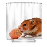 Curious Hamster Shower Curtain