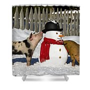 Curious Piglets And Snowman Shower Curtain
