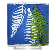 Cyanotype Print, Fern Shower Curtain
