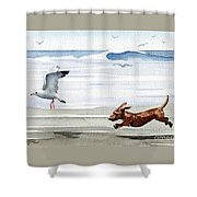 Dachshund At The Beach  Shower Curtain