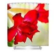 Desert Rose Shower Curtain