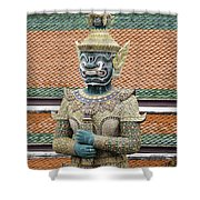 Detail From A Buddhist Temple In Bangkok Thailand Shower Curtain