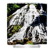 Diamond Creek Falls Shower Curtain