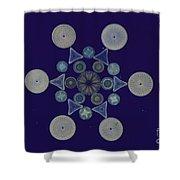 Diatom Arrangement Shower Curtain