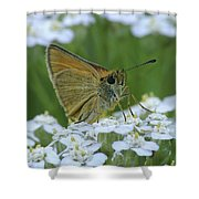 Dion Skipper Yarrow Blossoms Shower Curtain