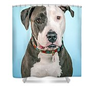 Cara Shower Curtain