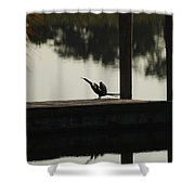 Dock Bird  Shower Curtain