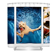 Dog Underwater Series Shower Curtain
