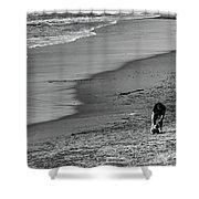 2 Dogs 2 Men Beach  Shower Curtain