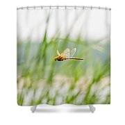 Dragonfly Flying Shower Curtain