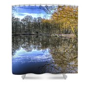Early Morning Forest Pond Shower Curtain