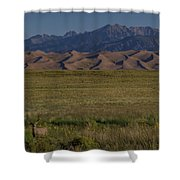 Eight Point Buck In The Grass Lands Of The Great Sand Dunes Shower Curtain