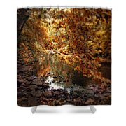 Fall Reflected Shower Curtain