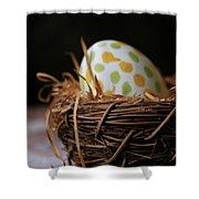 Fashionable Egg Shower Curtain