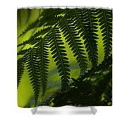 Fern Abstract Shower Curtain