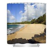Fleming Beach Shower Curtain