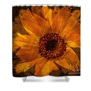 10449 Flower Shower Curtain