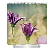 Flower On Summer Meadow Shower Curtain
