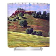 Flowering Meadow Shower Curtain