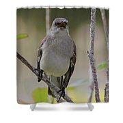 Fly Catcher Shower Curtain