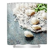 Food Background With Seafood And Wine Shower Curtain