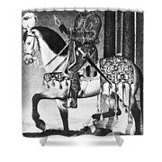 Francis I (1494-1547) Shower Curtain