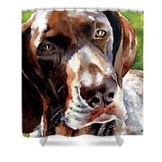 German Short Haired Pointer Shower Curtain
