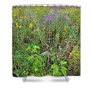 Glacial Park Native Prairie Shower Curtain