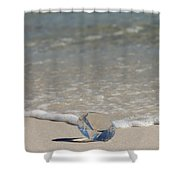 Glass Diamond On The Beach Shower Curtain