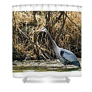 Great Blue Heron Fishing Shower Curtain