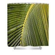 Green Palm Leaf Shower Curtain