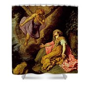 Hagar And The Angel Shower Curtain