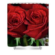 Happy Valentines Day Shower Curtain by Tracy Hall
