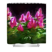 Home Decorations, Murals Shower Curtain