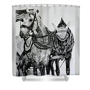 2 Horses Of Rothenburg 2000usd Shower Curtain