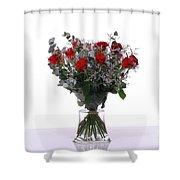 House Plant  Shower Curtain