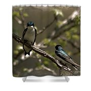2 In A Tree Shower Curtain