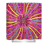 Infinity Star Flower An Abstract Fineart Expression By Navinjoshi At Fineartamerica.com Colorful Spe Shower Curtain