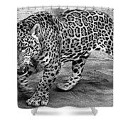 Jaguar Shower Curtain