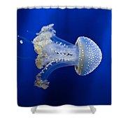 Jellyfish Shower Curtain by Joana Kruse