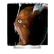 Johnsons Abyssal Seadevil Shower Curtain