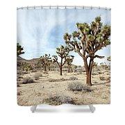 Joshua Tree National Park, California Shower Curtain