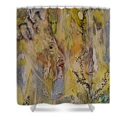 Journey Of The Soul Shower Curtain