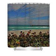 2- Juno Pier Shower Curtain